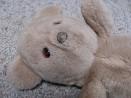 well-loved bear