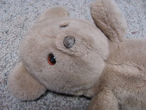 well-loved bear